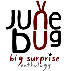 Junebug - Big Surprise - Anthlology by Junebug the band. Powerpop 2020
